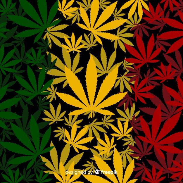 Les quatre premiers pays qui légalisent la production de cannabis